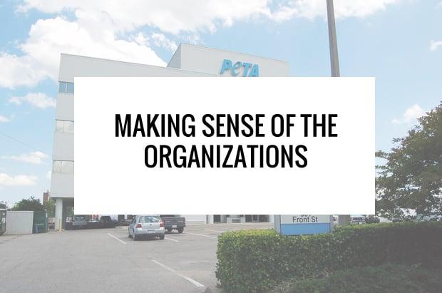 cruelty-free organizations