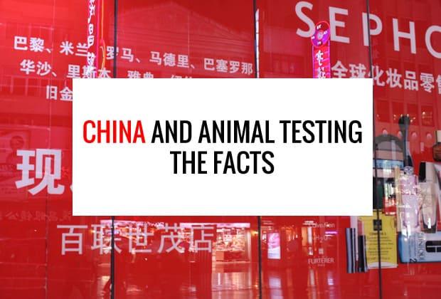 china animal testing
