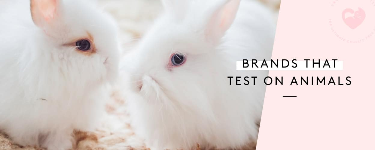 Companies That Test On Animals — 2019