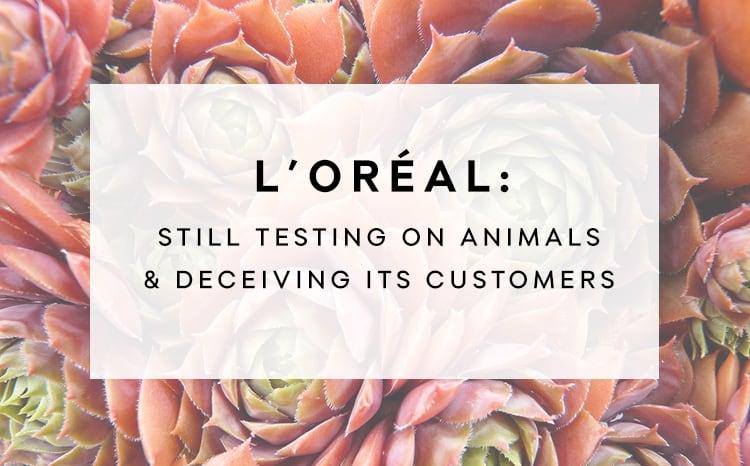 thesis statements on animal testing