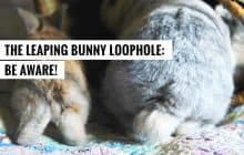 The Leaping Bunny Loophole: Be Aware!